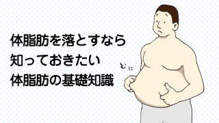 体脂肪を落とすなら知っておきたい体脂肪の基礎知識