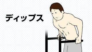 【ディップス】大胸筋下部に効果絶大!主な効果とトレーニング方法